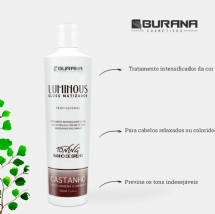 LUMINOUS CASTANHO 500mL